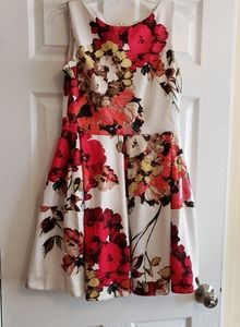 Scuba fit and flare dress, floral